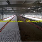 Breeding Farm Yogyakarta - Dhanang Closed House